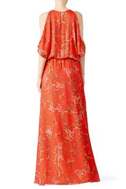 Angia Red Floral Maxi Dress by Alexis for $80 - $100 | Rent the Runway