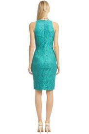 Vision in Lace Dress by David Meister