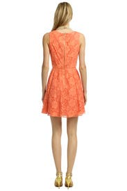 Sweet Virginia Scoop Dress by Ali Ro