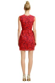 Primary Lace Dress by Shoshanna
