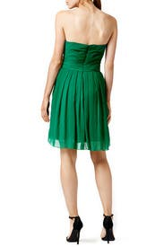Flora Chiffon Dress by Badgley Mischka
