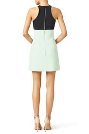 Mint Zip Dress by David Koma