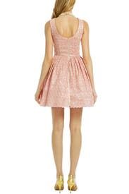 Blush Julia Dress by allison parris