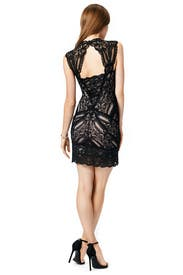 Pretty Woman Lace Dress by Nicole Miller