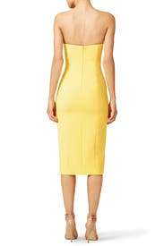 Sunflower Thompson Dress by Jay Godfrey