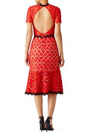 Cherry Lace Midi Dress by Jill Jill Stuart