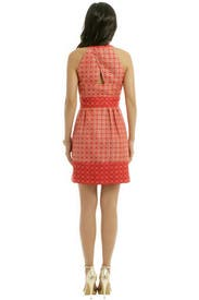 Snap Dot Dress by Ali Ro