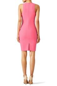 Pink Kenna Dress by Elizabeth and James
