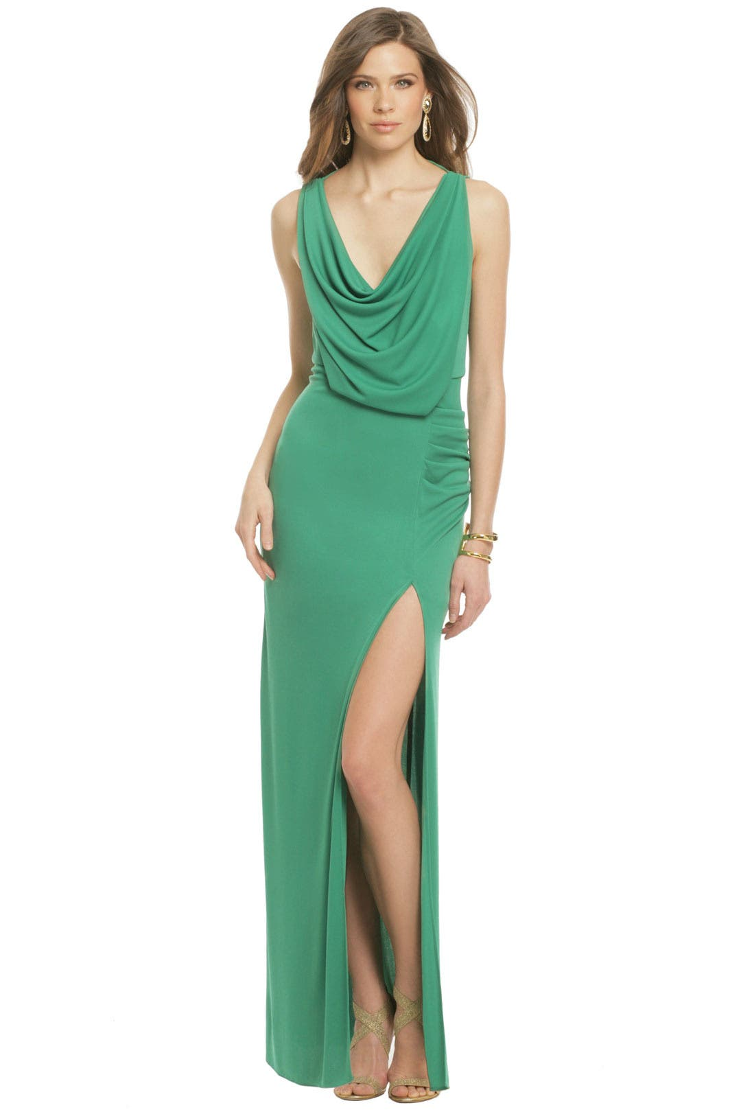 Ibera Wetlands Gown by BCBGMAXAZRIA