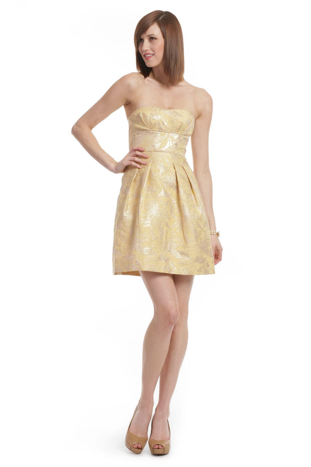 Tea Room Tapestry Dress by BCBGMAXAZRIA