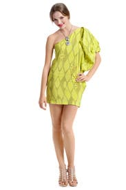 French Trellis Dress by Twelfth Street by Cynthia Vincent