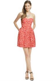 Megan Dress by Shoshanna