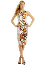 Peplum in the Garden Dress by Suno