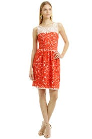 Summer Lovin Swirl Dress by Trina Turk
