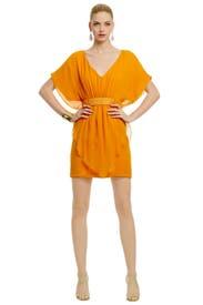 Slice of Mango Dress by Trina Turk