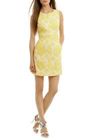 Lemon Meringue Sheath by Diane von Furstenberg