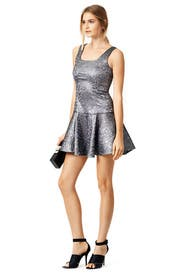 Silver Flair Dress by Yoana Baraschi