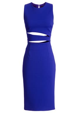 Katrina Sheath by Cushnie Et Ochs