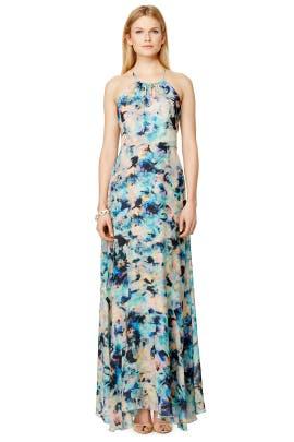 Parker - Painted Envy Dress