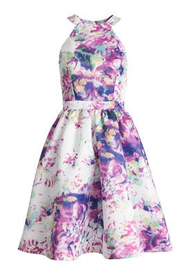 Floral Element Dress by Parker