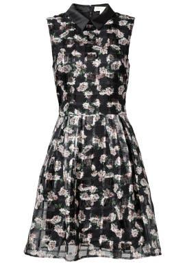 Cara Dress by ERIN erin fetherston