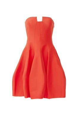 Vanna Dress by Halston Heritage