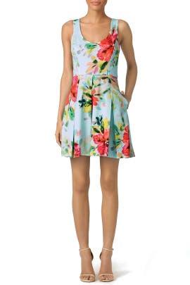 Aniya Floral Dress