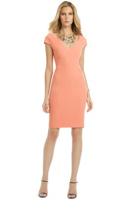 Tea Rose Brandy Dress by Rachel Roy
