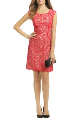 All About Crochet Sheath by Alice by Temperley