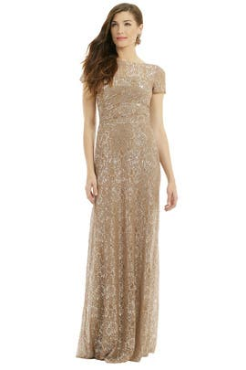 Lurex Dusted Lace Gown by David Meister