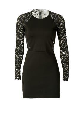 Parker - Vita Dress