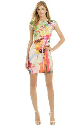 Griffith Park Print Dress by Clover Canyon