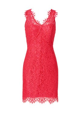 Shoshanna - Watermelon Lace Dress