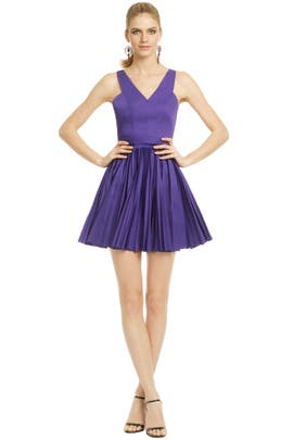 Robert Rodriguez Collection - Pleased Pleat Dress