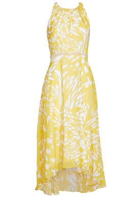 Paradiso Dress by Badgley Mischka