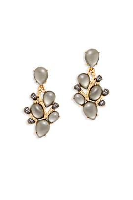 Gray Crystal Vine Earrings by Oscar de la Renta