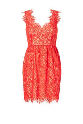 Shoshanna - Lace Sierra Dress