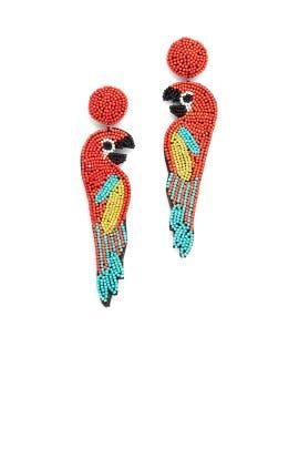 Beaded Parrot Earrings by Kenneth Jay Lane