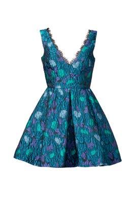 Peony Fringe Dress by Cynthia Rowley