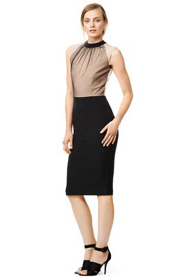 In Neutral Sheath by MSGM