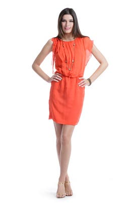 Robert Rodriguez Collection - Tropical Punch Dress