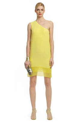 Tibi - Sheer Genius Dress