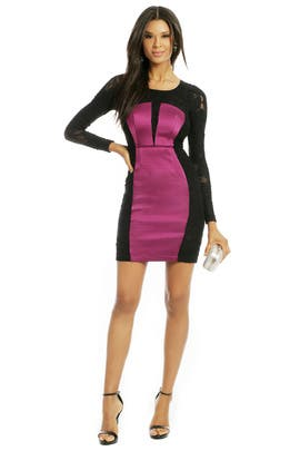 Tracy Reese - Shake It Like Lace Sheath