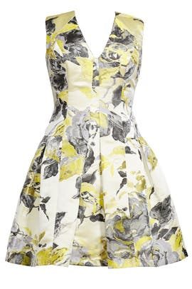 Painted Citrus Dress by Carmen Marc Valvo