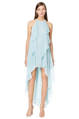 Danielle Maxi Dress by BCBGMAXAZRIA