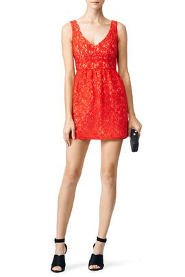 Phoenix Lace Dress by Shoshanna