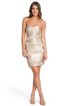 Carlos Miele - A Formal Affair Dress