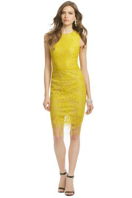 Vera Wang - Honey Glazed Sheath