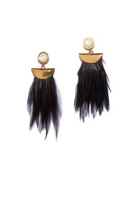 Black Parrot Earrings by Lizzie Fortunato