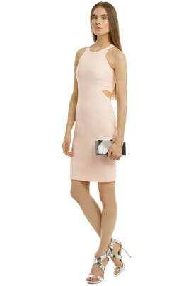 Elizabeth and James - Fade to Blush Sheath